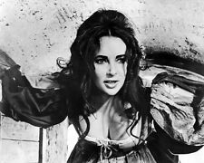 The Taming of the Shrew Elizabeth Taylor Poster or Photo