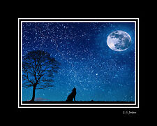 "Double MATTED Photograph ""Night Wolf "" 8x10 to 16x20 Wall Art Silver Metallic"
