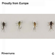 Riverruns Realistic Flies Mayfly Nymph Flies Trout Flies 4 Colors With Fly Box