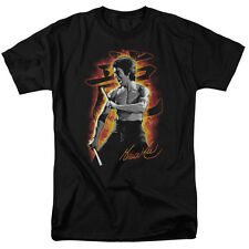 "Bruce Lee ""Dragon Fire"" T-Shirt or Tank - Adult, Child"