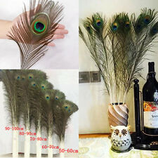 Wholesale free beautiful natural 20-40 inches/50-100 cm peacock feathers eyes &