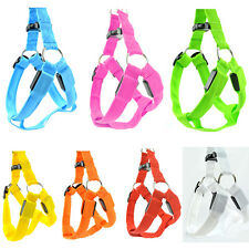 ღNew Leash Rope Belt Recharge LED Flashing Light Harness Dog Pet Safety Collarღ