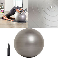 Exercise Fitness Silver Ballance Ball  With Hand Pump Yoga Stability Workout NEW