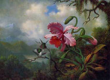 Handmade Oil Painting repro Martin Johnson Heade Orchid with Two Hummingbirds 06