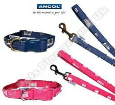 Denim Dog Collar or Lead Pink Blue Tartan Patches Ripped Jeans Style Check Plaid