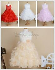 Flower Girls Princess Pageant Party Evening Wedding Bridesmaid Gown Tutu Dress