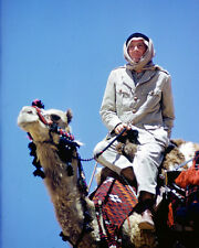 Peter O'Toole on Camel Lawrence of Arabia C Poster or Photo