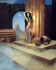 Cher Full Length in Chains Exotic Pin Up Scantily Clad Poster or Photo