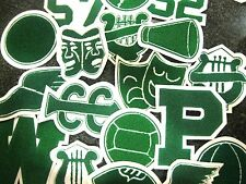 Kelly Green Chenille  w/  White Felt Letterman Jacket Patches Crafts