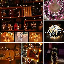 Fairy Christmas Wedding Party Holiday Yard Home Decoration LED String Light Lamp