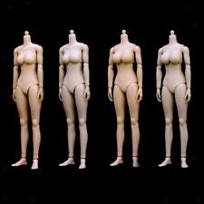 1:6 Scale Action Figure Female Nude Body Mid/Big Boob Model Toy with Accessories