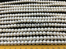AA+ 8-8.5mm white button freshwater pearls,Rondelle pearl Beads