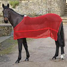 SHIRES EQUESTRIAN HORSE COB PONY SHOWING EXERCISE ANTI SWEAT RUG SIZE S M L XL