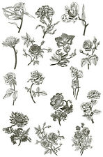 """ABC Designs Nocturnal Flowers Machine Embroidery Designs SET 5""""x7"""" hoop"""
