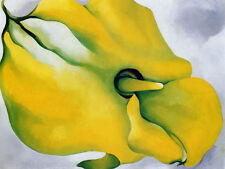 Yellow Callia - Georgia o'Keefe - CANVAS OR PRINT WALL ART