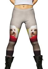 Yizzam- Maltese On Doggy Bed -New Ladies Womens Leggings Xs S M L Xl 2Xl 3Xl 4Xl