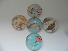 Shabby Chic Birds Images Glass Cabochons for Jewellery Projects,Scrapbook,Crafts