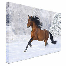 galloping horse Snow scene Canvas Wall Art Print Large + Any Size