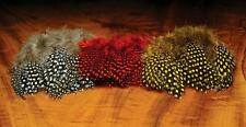 Hareline Strung Guinea Fowl Feathers for Fly Tying | Choice of Colours