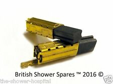 TRITON T80sI PUMPED SHOWER MOTOR BRUSHES (2) WITH BRASS CASE  22006680