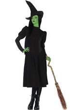 Elphaba Wicked Witch Hat Outfit Adult Costume