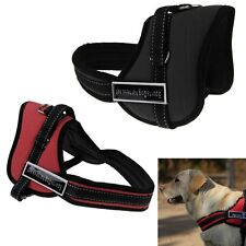 Nylon Multipurpose Dog Harness Service Pulling Sport Professional Pit Bull New