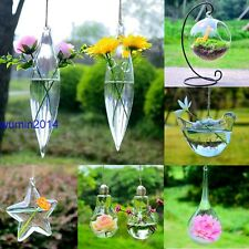Hanging Glass Plants Flower Vase Hydroponic Container Party Wedding Decor Hot