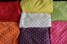 NEW Baby Minky Dot PHOTO PROP BLANKET Fabric Soft Spring Backdrop Infant Newborn