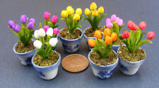 1:12 Scale Handmade Dolls House Miniature Tulip Flowers In A Pot Accessory