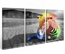 Canvas 3 pieces Zebra black white Animal Desert Africa multicolour Natural
