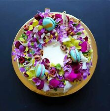 Edible Orchids Flowers Blooms Cake Decorations Gourmet Food Special DishesYummy