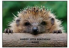 CUTE HEDGEHOG  A4 EDIBLE CAKE TOPPERS ICING SHEET RICE WAFER CARD ANIMAL