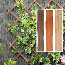 Expanding Wooden Trellies Climbing Plant Garden Expandable Support Fence 6 x 1ft