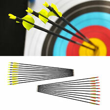 10 pcs Archery Arrow Hunter Arrows Fiberglass Target Practice Hunting 31""