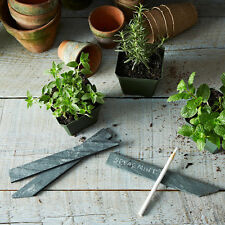 Natural Slate Garden Plant Bush Markers Label Tag Pointed Stakes Herb-set of 50