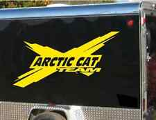 "Snowmobile TEAM decal - 4 foot long by 25"" high - choose color and brand name"