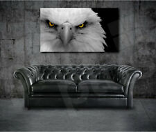 White Eagle Head Canvas Art Poster Print Home Wall Decor
