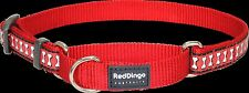 Red Dingo Reflective Martingale Dog Collar - Red