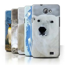 STUFF4 Back Case/Cover/Skin for Samsung Galaxy R/I9103/Arctic Animals