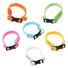 Glow LED Cat Dog Pet Flashing Light Up Safety Collar (Green)
