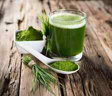 100% Organic Wheatgrass Powder (Soil Association Certified) UK Seller