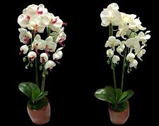 70cm Orchid Potted Phalaenopsis Orchid Pot Artificial Flowers Garden Home Décor