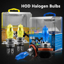 H11 H7 H4 9005 9006 Xenon Gas HOD Halogen Headlight Bulbs Light 100W 3000K6000K