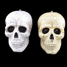 9/16cm Plastic Human Skull Head Halloween Party Horror Decoration Prop Showy