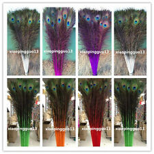 Wholesale! 10/20/50/100 PCS peacock eye feathers 28-32 inches /75-80cm 7color