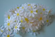 **NEW for 2017**GORGEOUS 25mm Big TISSUE DAISIES *CONFETTI for throwing or table