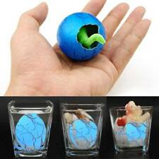 New Hatching Growing Dinosaur Egg Educational Incubate Expand Water Toys