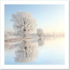 Landscape Of Winter Tree At Dawn Art Print Home Decor Wall Art - 3