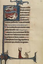 Initial S Lord Appearing David Water Bute Master Franco Flemish Active About 126
