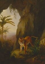 Tiger In Cave Jacques Laurent Agasse 1814 Art Photo /Poster Repro Print Many Siz
